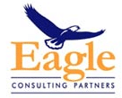 Eagle Consulting Partners, Healthcare IT Solutions